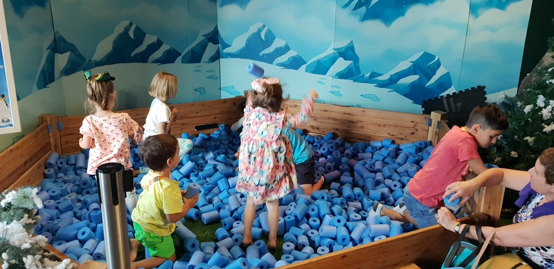 Summer School Holidays at Sea Life Melbourne Aquarium