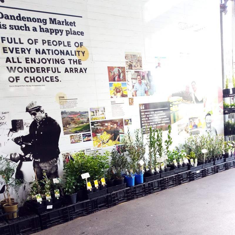 Why You Should Visit Dandenong Market With Your Children
