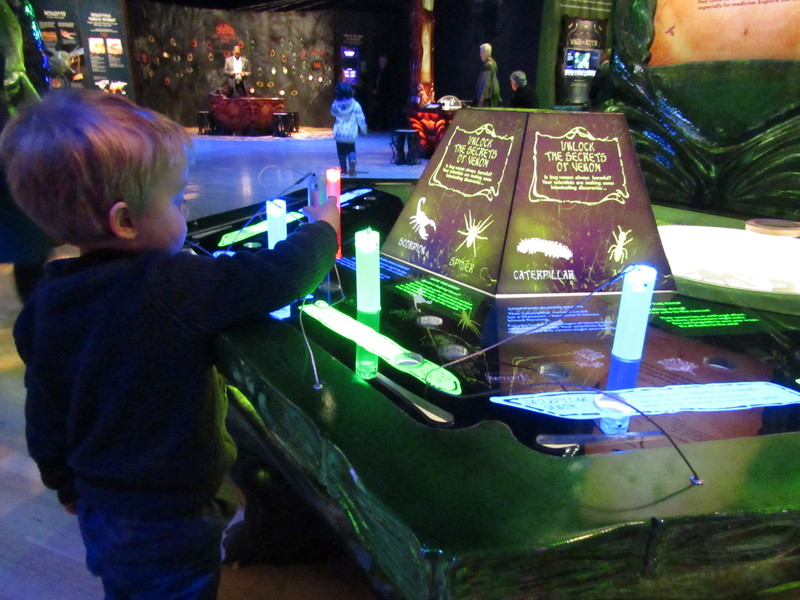Bug Lab: Little Bugs, Super Powers opens at Melbourne Museum