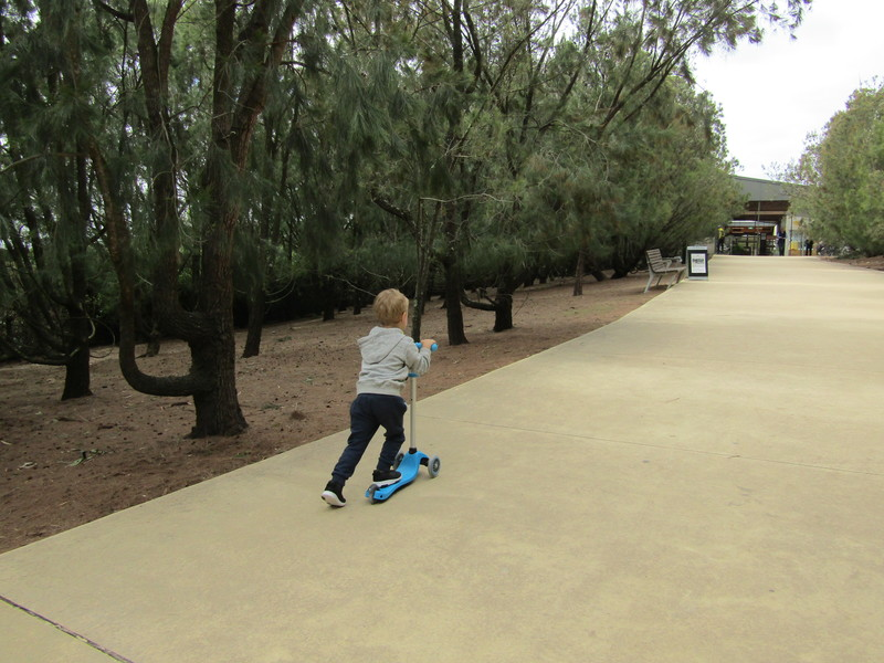 Globber EVO COMFORT Scooter Review and Giveaway
