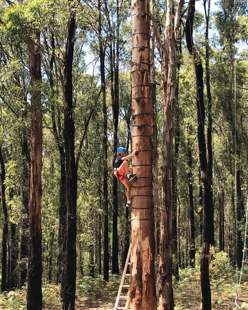 Kinglake Forest Adventures