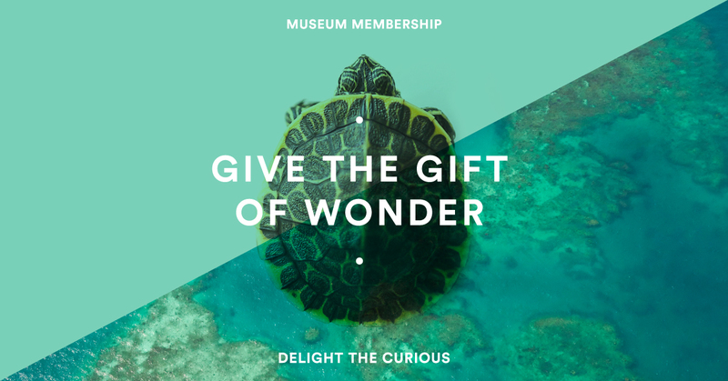 Melbourne Museums Membership Gifts for Families