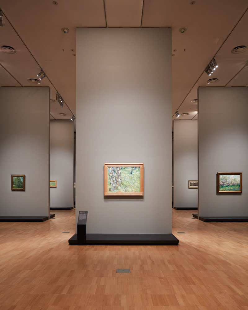 Free Entry for Kids to Van Gogh Exhibition on the First Day of Winter