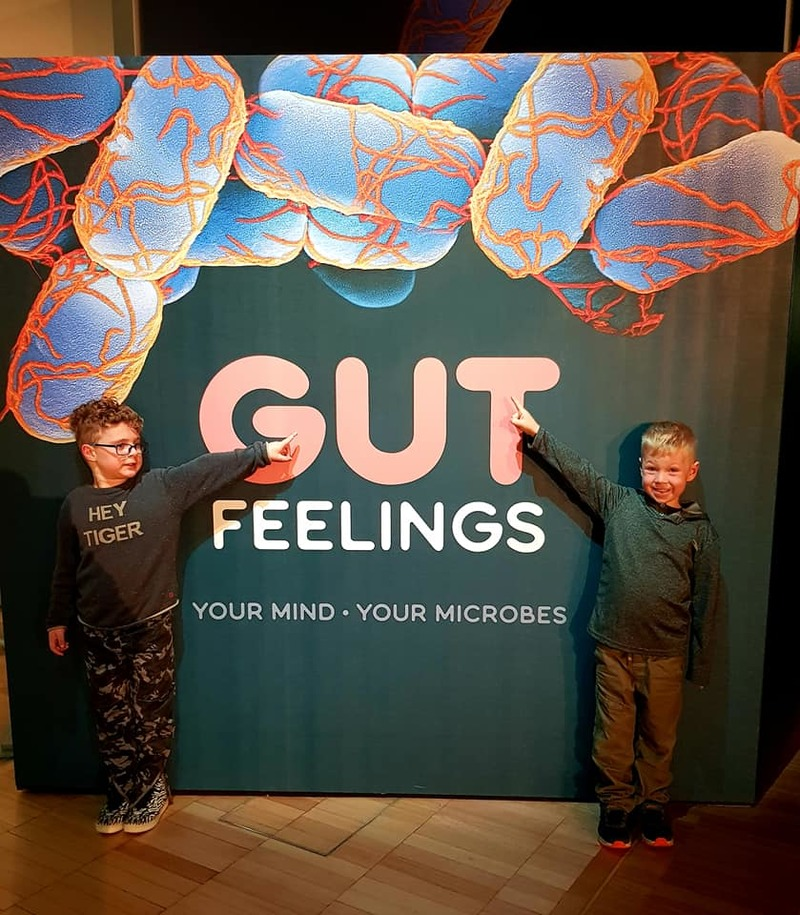 Outside the exhibition  - Gut Feelings: Melbourne Museum