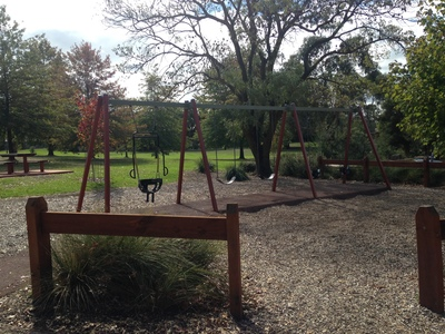 So much to choose from at McKenzie Reserve
