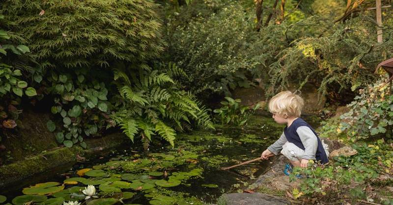 Secret Gardens of the Dandenongs