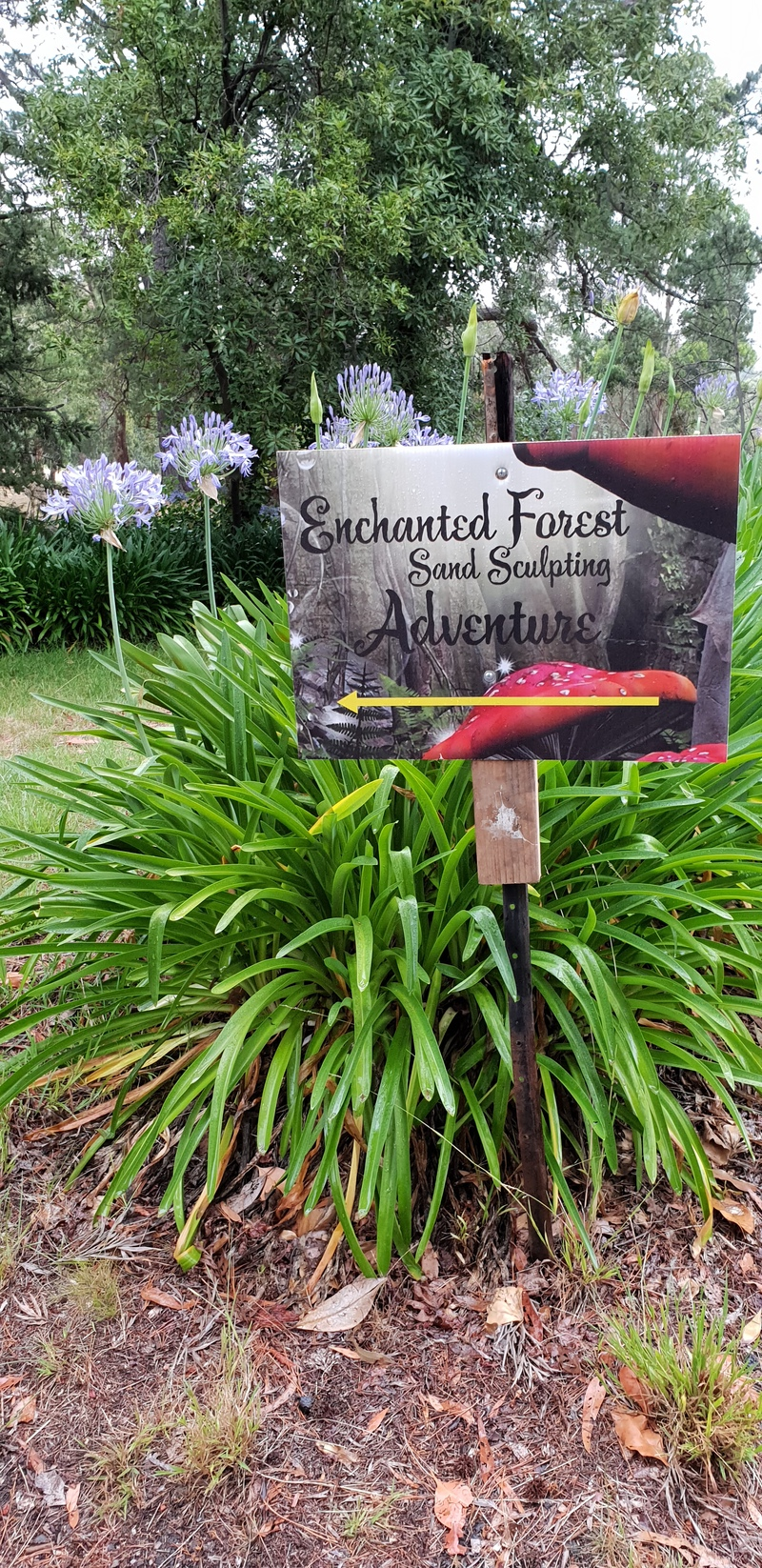 The Enchanted Forest Sand Sculpture Adventure