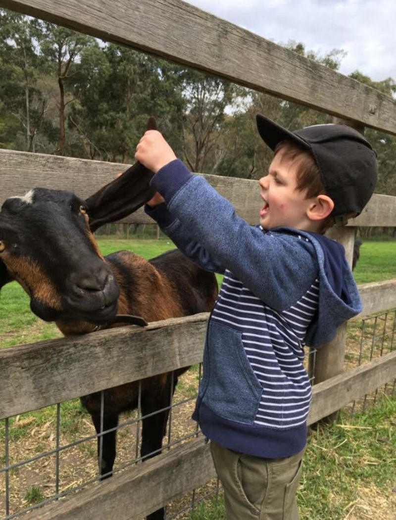 Big Long List of Things to Do with Kids in Melbourne